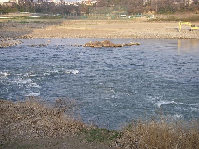 2015年3月31日利根川県庁裏合流左岸午前6時45分頃(大嶋)