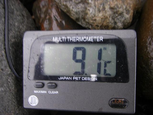 2015年4月4日利根川利根橋右岸下午前9時30分頃 (大嶋)