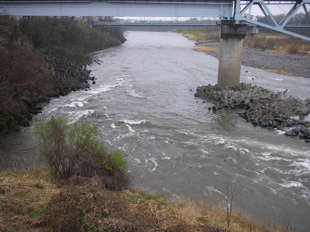 2015年4月4日利根川利根橋上から下流撮影午前9自30分頃(大嶋)
