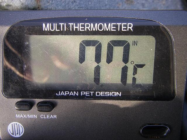 2015年4月18日利根川県庁裏左岸午前6時50分頃(大嶋)
