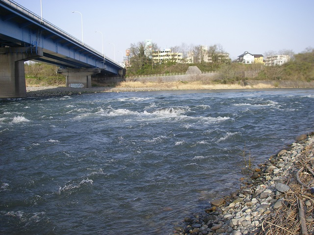 2015年4月18日利根川中央大橋下左岸より上流撮影午前6時50分頃(大嶋)