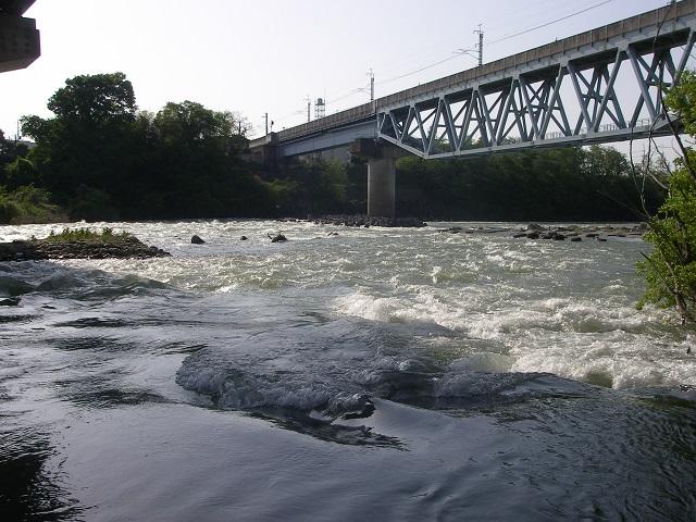 2015年5月2日午前7時35分頃の利根川右岸(利根橋下)大嶋
