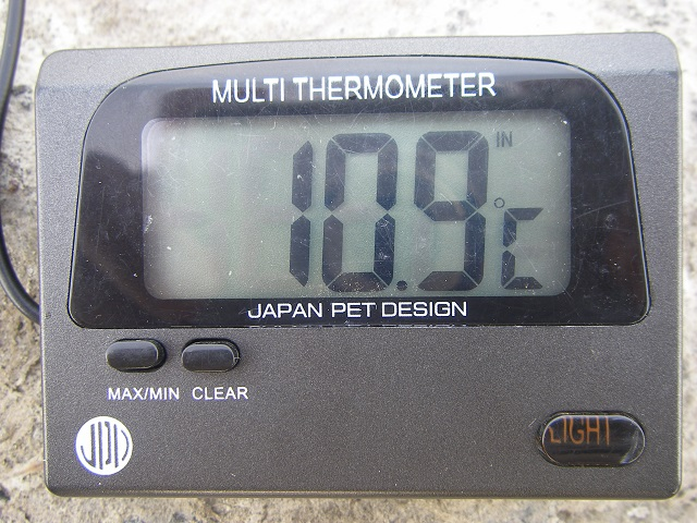 P5150081 大渡橋.jpg