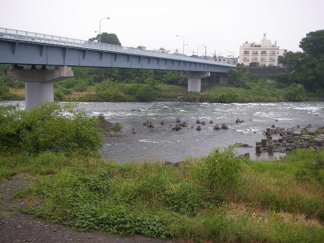 P6030159 利根橋右岸.jpg