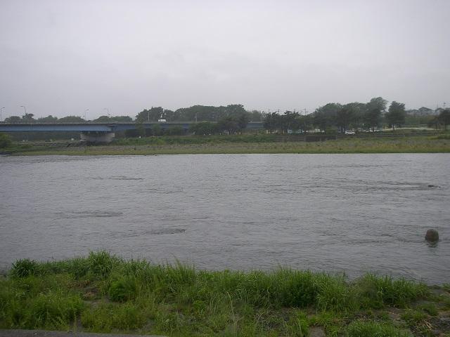 P6090181 大渡橋上流ー2.jpg