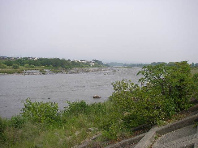 P6170211 大渡橋左岸.jpg