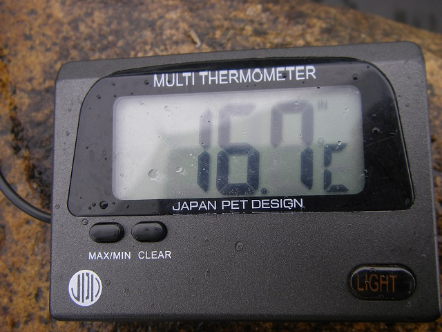 P6190214 大渡橋.jpg