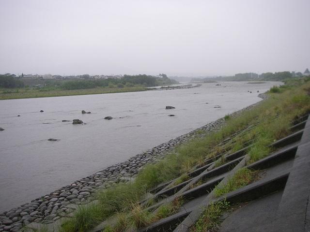 P6190215 大渡橋左岸上流.jpg