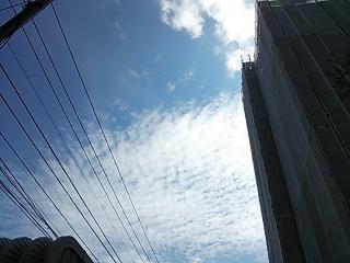 DSC_4874.jpg