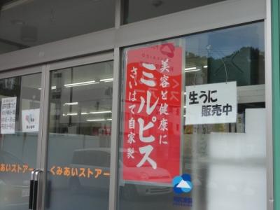 利尻島 051