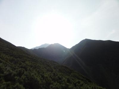 利尻島 196