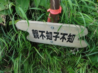 利尻島 252