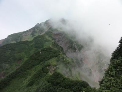 利尻島 293