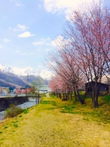 写真 2015-04-28 12 41 18