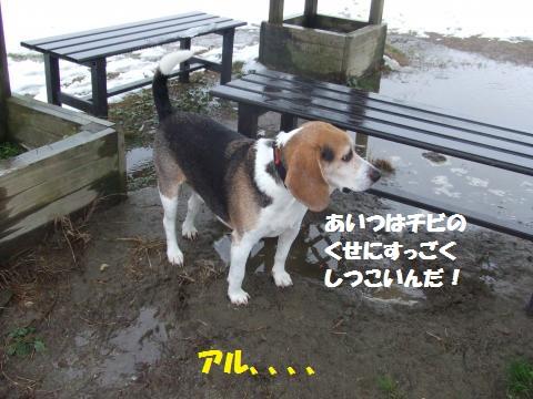 030_convert_20141224025434.jpg