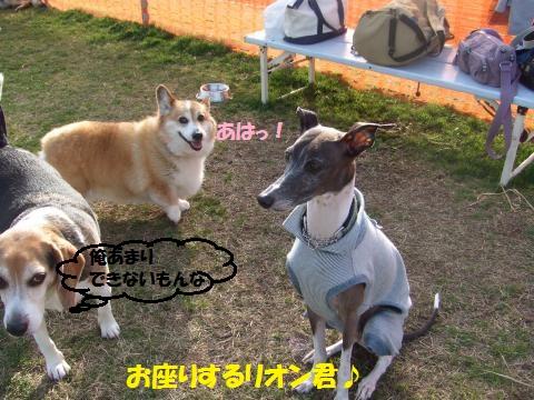 038_convert_20150601005951.jpg