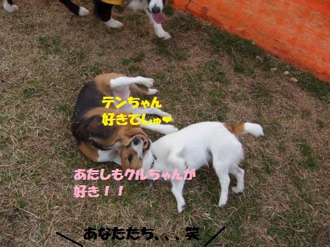 044_convert_20150217223341.jpg