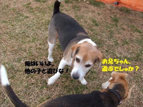 046_convert_20150217223528.jpg