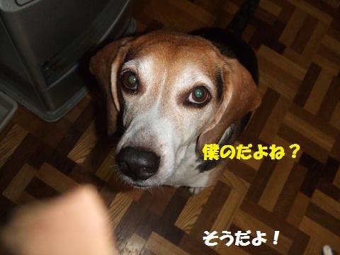 047_convert_20141224025558.jpg
