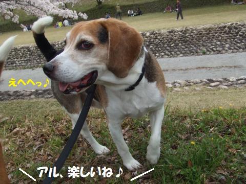 057_convert_20150405213836.jpg