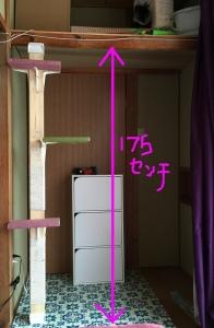 Photo H27-06-14 15 53 27