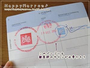 パスポート記載6