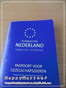 パスポート記載1