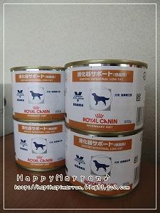 缶詰フード1