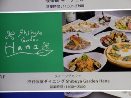 シブヤガーデン ハナ (2)