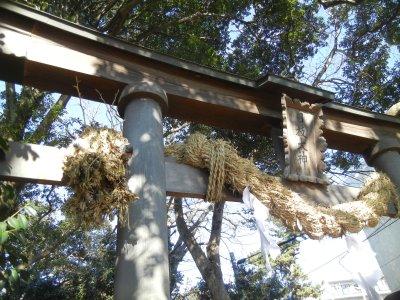 日枝神社・西向きの藁蛇