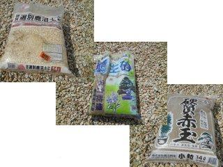 用土(鹿沼1・桐生1・赤玉1)frウチョウラン