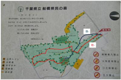 県民の森散策経路(推定)