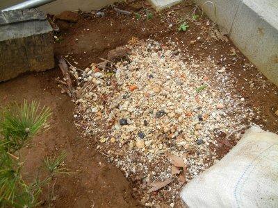 廃棄する用土の捨て穴