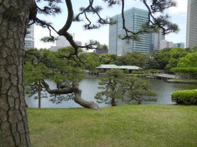 松のお茶屋から見た中島の御茶屋