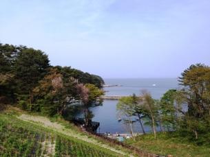 blog150604miyako03.jpg