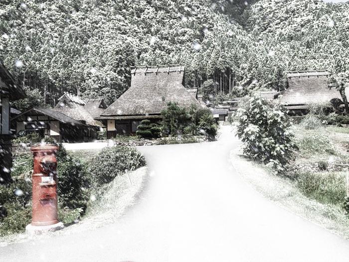 雪が降る800