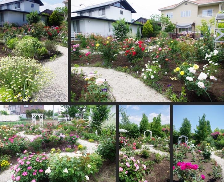 2014-05-28 2014-05-28 002 062 - コピー-horz-vert