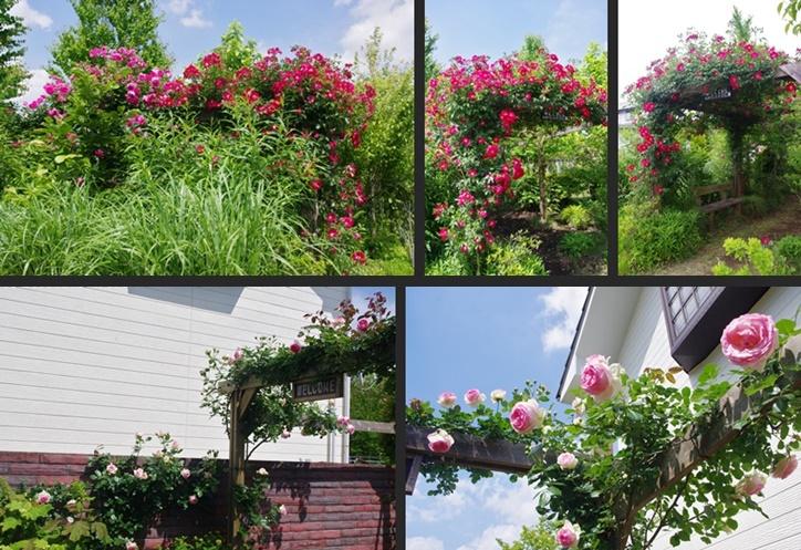 2014-05-28 2014-05-28 002 072-horz-vert