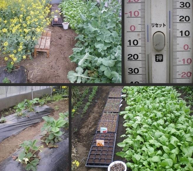 2007-01-01 2007-01-01 001 102-horz-vert