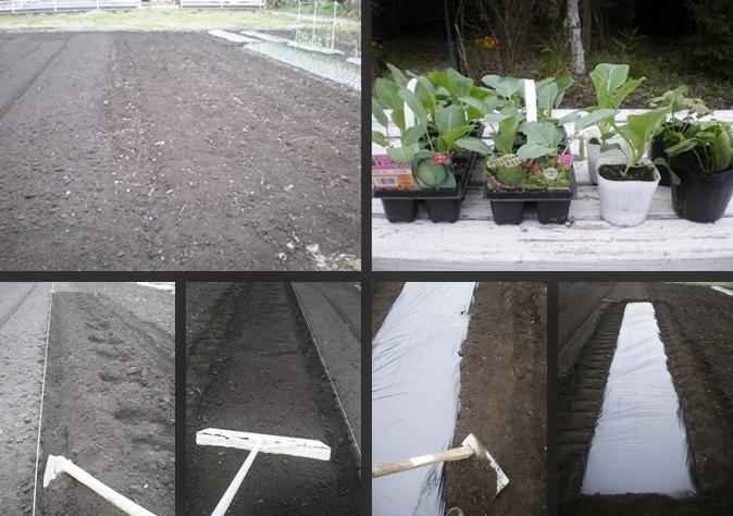 2007-01-01 2007-01-01 001 004-horz-vert