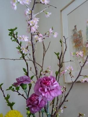 桜とカーネーション