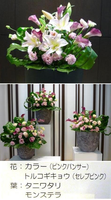 a三越の花 P1350480