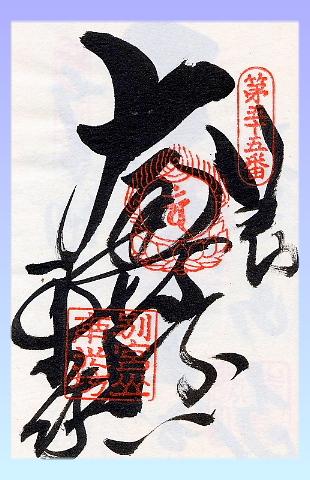 imagen19