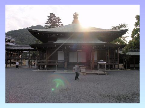 imagez5.jpg