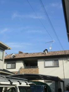 $加古川 太陽光発電 販売会社エコプラスワンの太陽光発電 施行実績ブログ