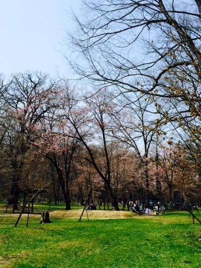 2015.5.6神楽岡公園