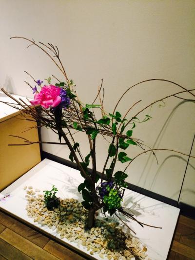 2015.6.9花展10