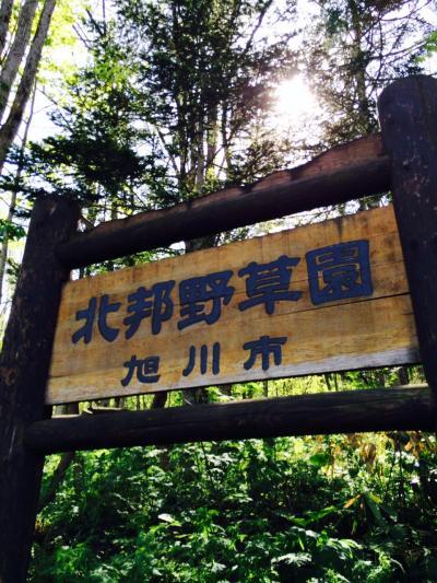 2015.6.10.嵐山4