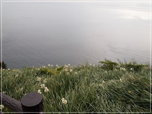 1502167.jpg