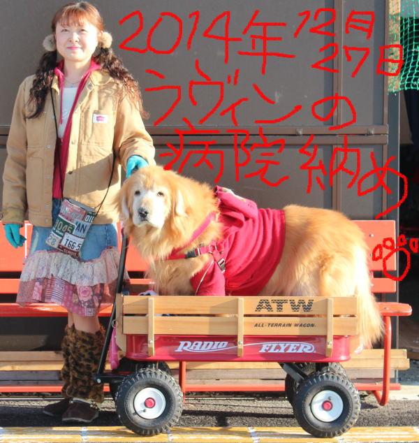2014年12月27日(土)ラヴィン病院納めAM8時半出発